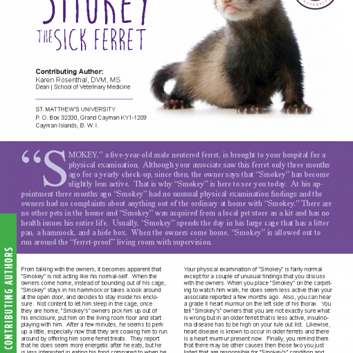 http://vet.abaxis.com/rs/705-OZG-628/images/Smokey the Ferrett.pdf