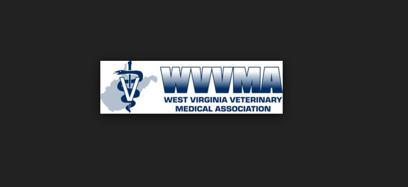 West Virginia VMA 2016