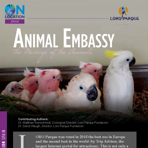 Animal Embassy the Message of the Animals