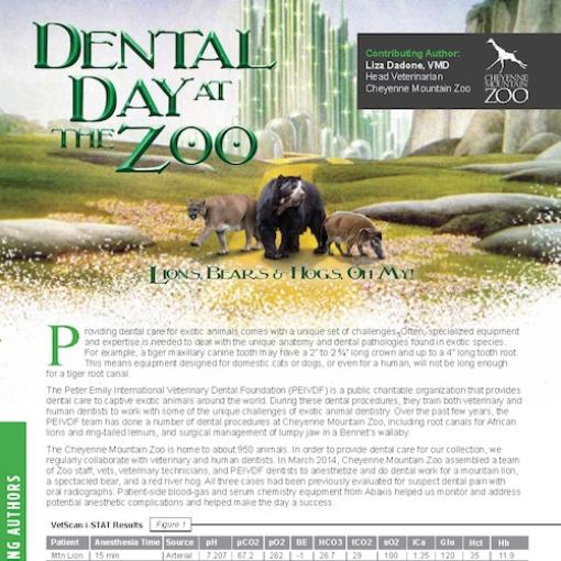 Abaxis Large Animals Dental Day Zoo