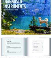 Diagnostic Instrument Booklet