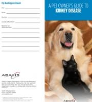 Kidney Disease Brochure
